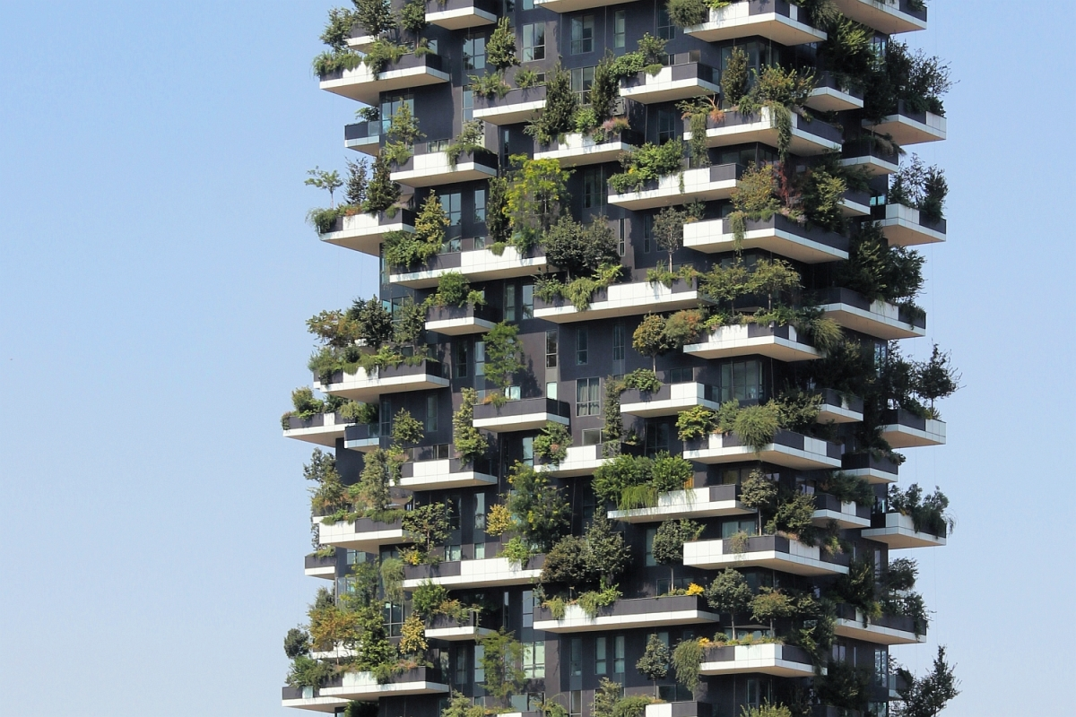 2015-10-18: vertical forest